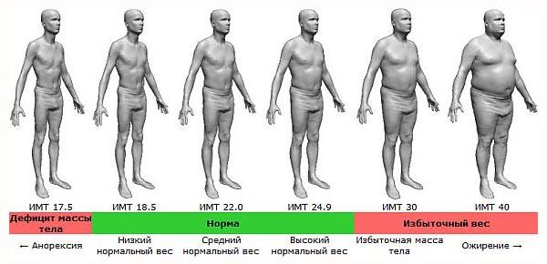 indeks-massy-tela-dlya-muzhchin-imt