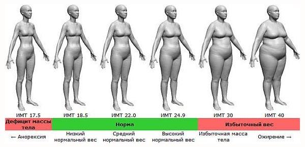 indeks-massy-tela-dlya-zhenshin-imt